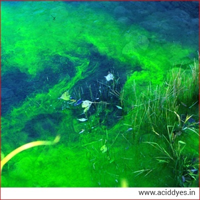 Acid Dye For Water Tracing in india