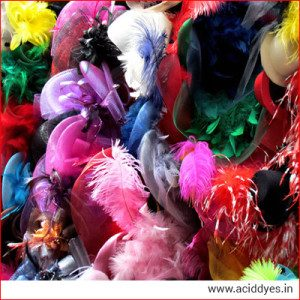 Fur Feathers India
