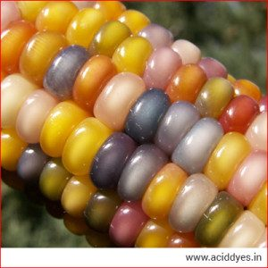 Acid Dyes For Agricultural